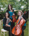 The SS String Trio in the M25, London