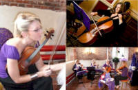 The BSI String Quartet