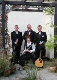 The TF Ceilidh /Barn Dance Band