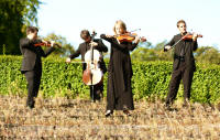 The EK String Quartet