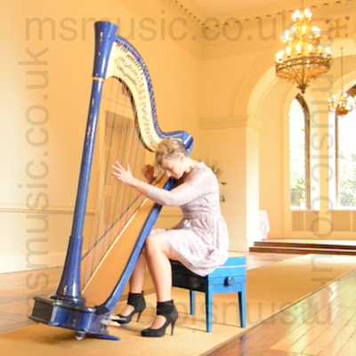 Harpist - Jemima in Walsall, the West Midlands