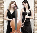 The LD Flute & Harp Duo in the East of England