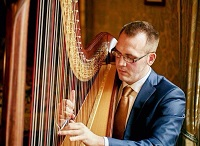 Harpist - Llwelyn in Walsall, the West Midlands